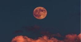 আজ দেখা মিলবে বছরের শেষ 'ফ্লাওয়ার' সুপারমুন