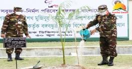 মুজিববর্ষ উপলক্ষে চট্টগ্রাম সেনানিবাসে বৃক্ষরোপণ অভিযান উদযাপন