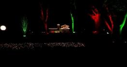 বঙ্গবন্ধুর জন্মদিনে আলো ঝলমলে টুঙ্গিপাড়া